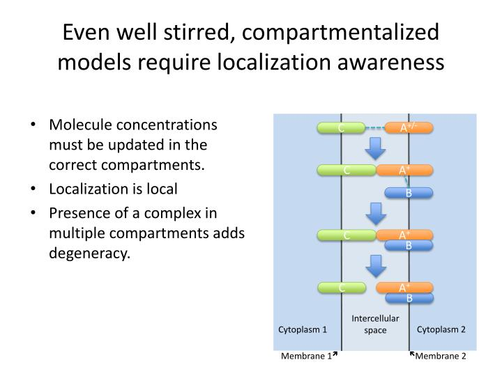 Even well stirred, compartmentalized models require localization awareness