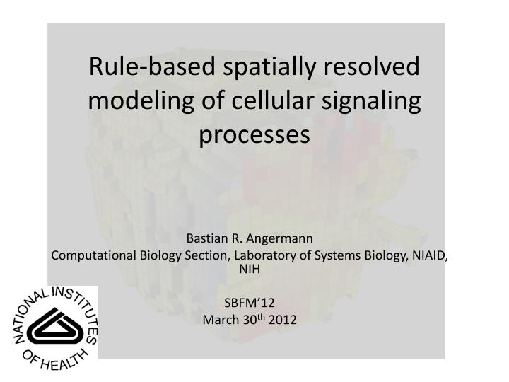 Rule based spatially resolved modeling of cellular signaling processes