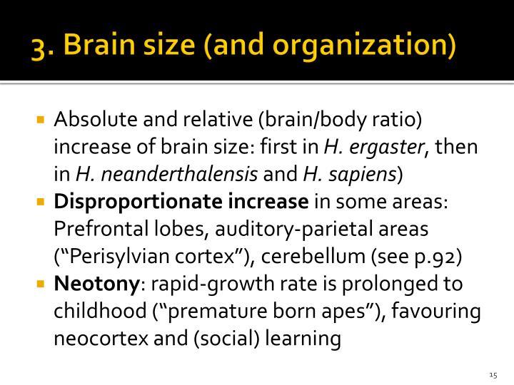 3. Brain size (and organization)