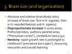 3 brain size and organization