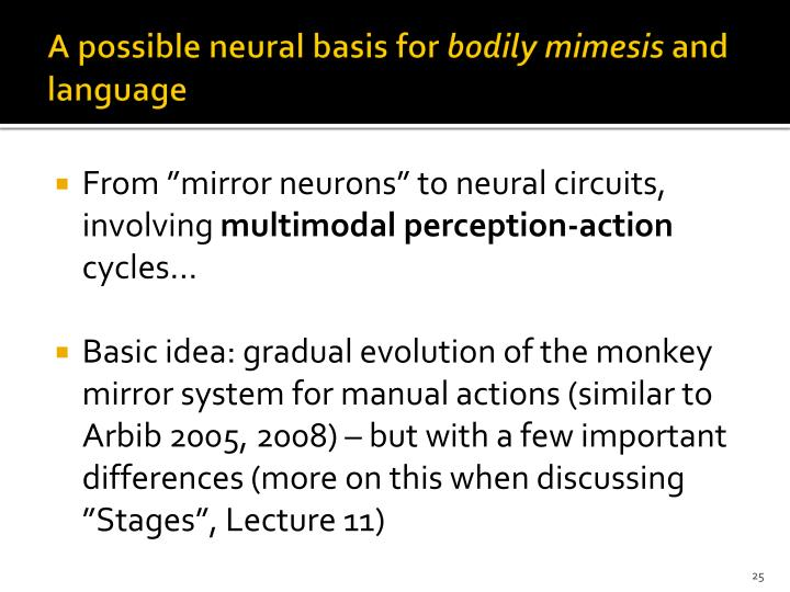 A possible neural basis for