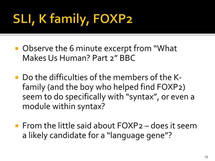 SLI, K family, FOXP2