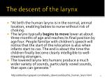 the descent of the larynx