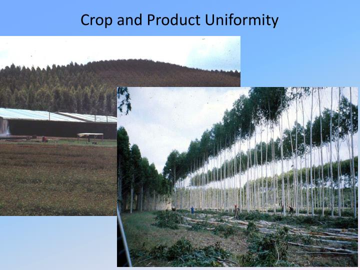 Crop and Product Uniformity