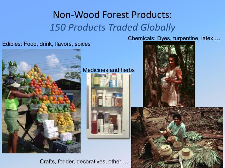 Non-Wood Forest Products: