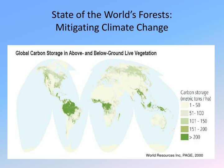 State of the World's Forests: