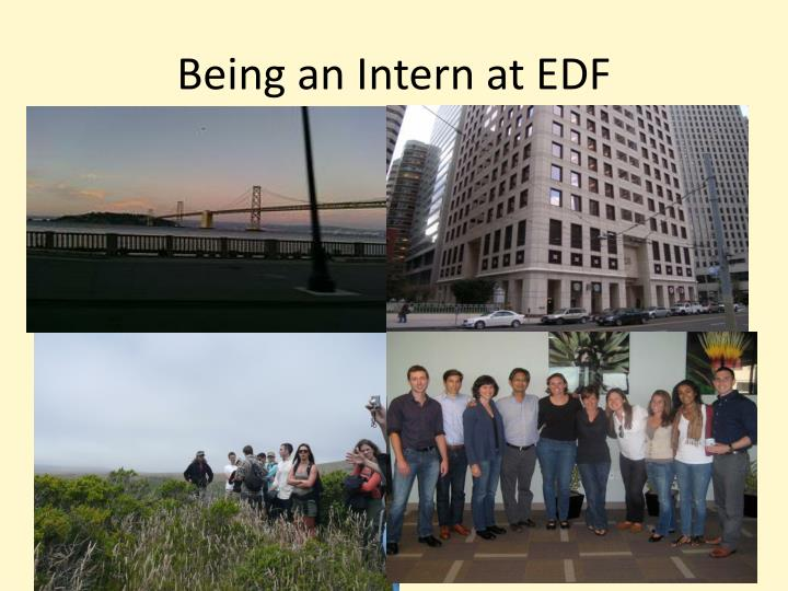 Being an Intern at EDF