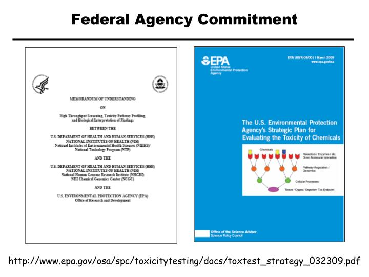 Federal Agency Commitment