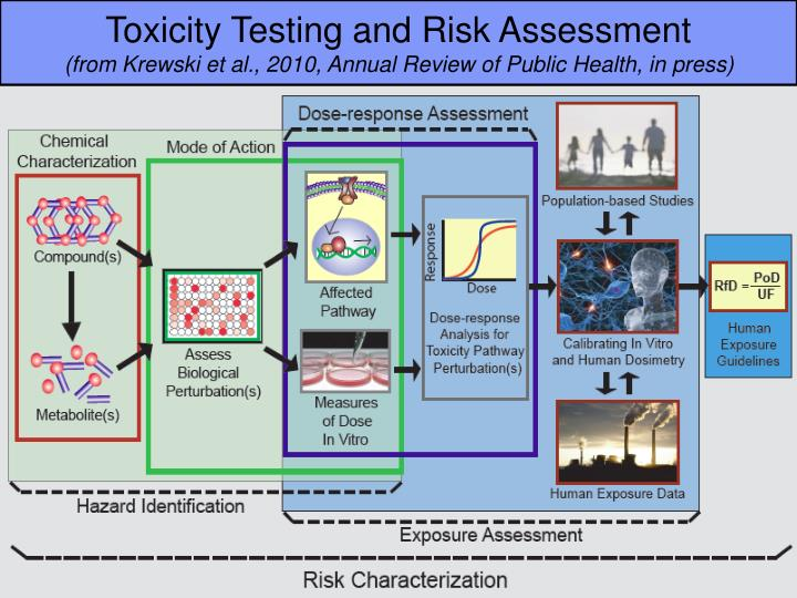 Toxicity Testing and Risk Assessment