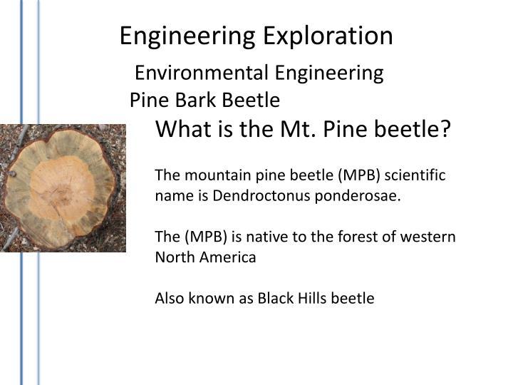 Environmental Engineering