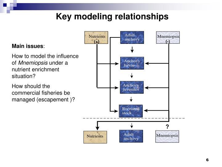 Key modeling relationships