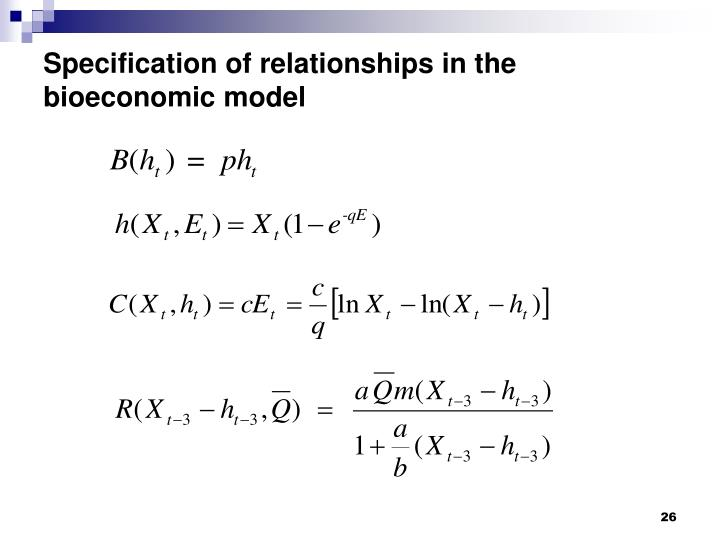 Specification of relationships in the bioeconomic model