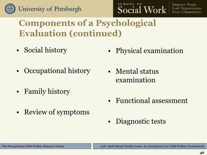 Components of a Psychological Evaluation (continued)