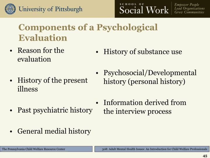 Components of a Psychological Evaluation