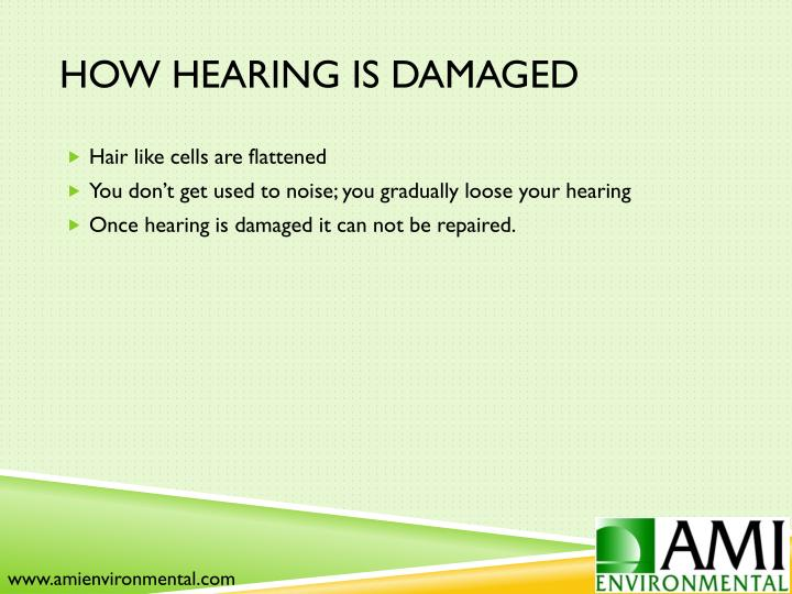 How Hearing is Damaged