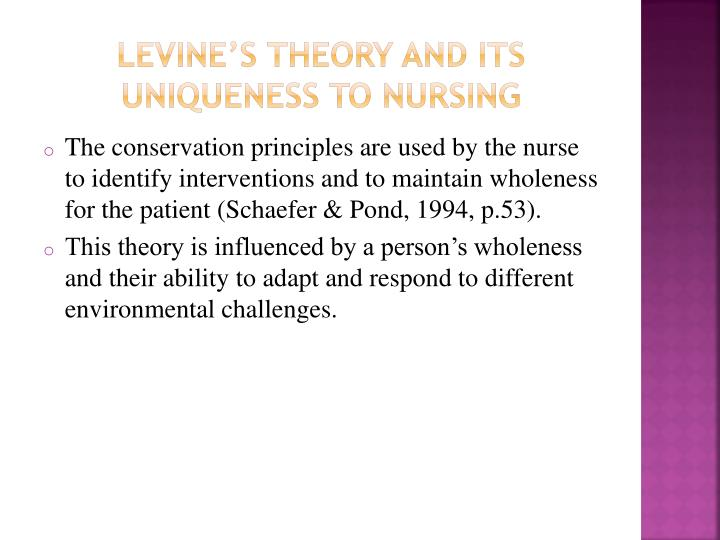 Levine's theory and its uniqueness to nursing
