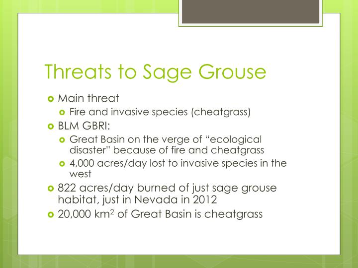 Threats to Sage Grouse