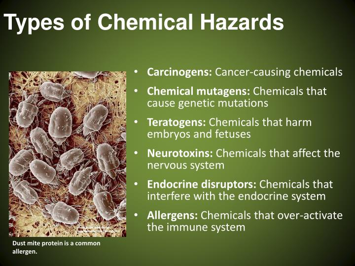 Types of Chemical Hazards