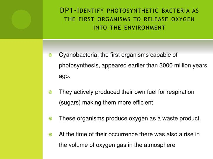 Dp1 identify photosynthetic bacteria as the first organisms to release oxygen into the environment