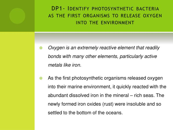 Dp1 identify photosynthetic bacteria as the first organisms to release oxygen into the environment1