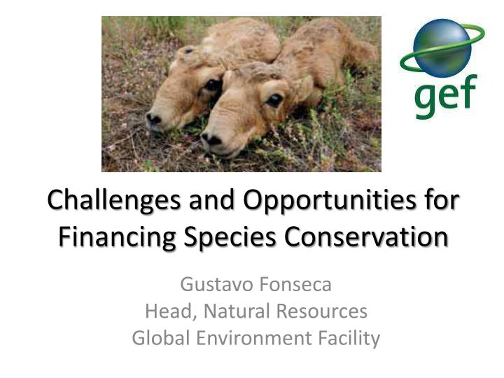 Challenges and Opportunities for Financing Species Conservation