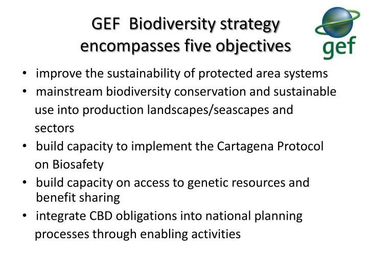 GEF  Biodiversity strategy