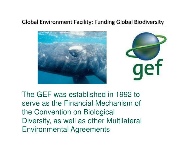 Global environment facility funding global biodiversity