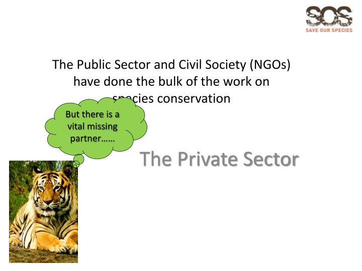The Public Sector and Civil Society (NGOs)