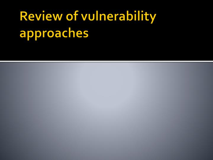 Review of vulnerability approaches