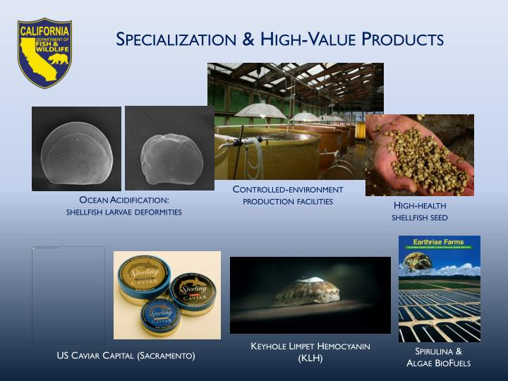 Specialization & High-Value Products