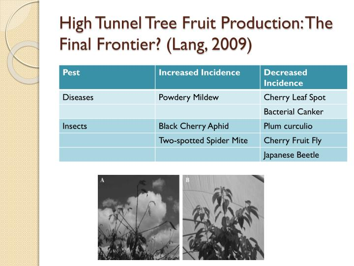 High Tunnel Tree Fruit Production: The Final Frontier? (Lang, 2009)