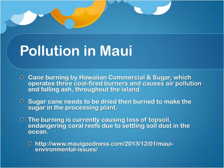 Pollution in maui
