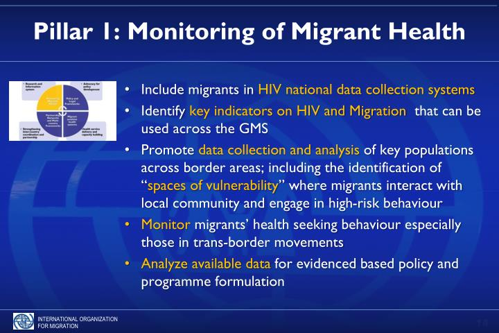 Pillar 1: Monitoring of Migrant Health