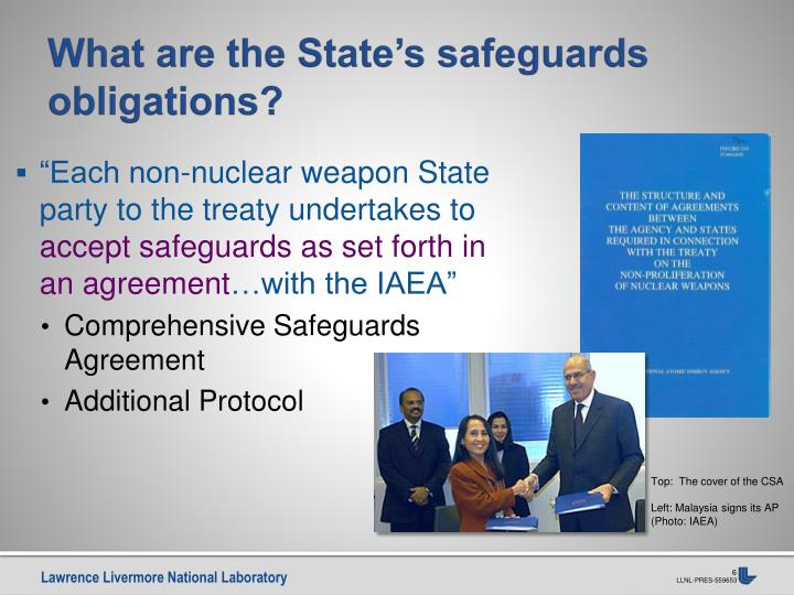 What are the State's safeguards obligations?
