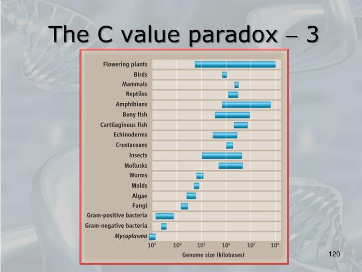 The C value paradox  3