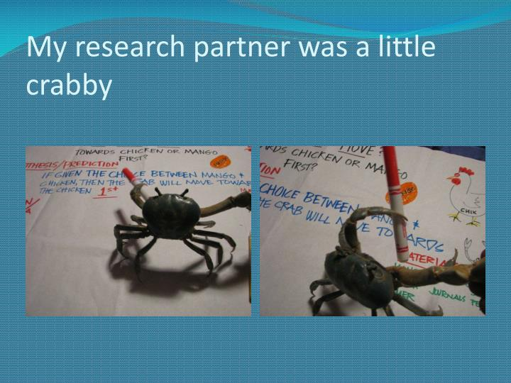 My research partner was a little crabby