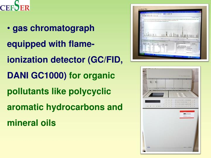 gas chromatograph equipped with flame-ionization detector (GC/FID, DANI GC1000)