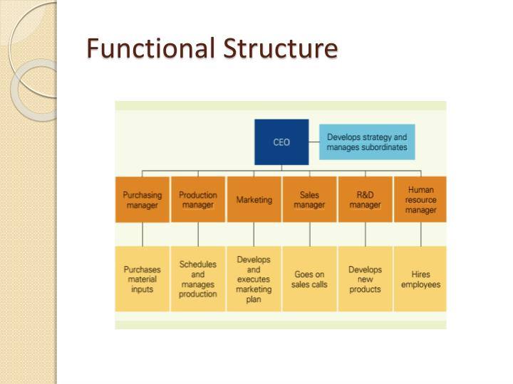Functional Structure