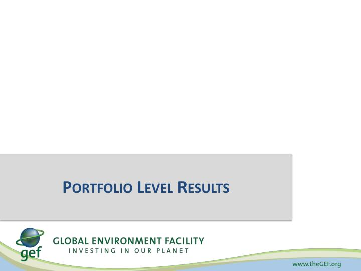 Portfolio Level Results