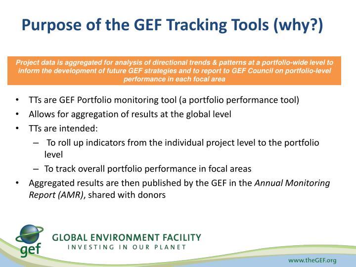 Purpose of the GEF