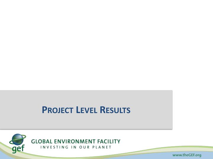Project Level Results