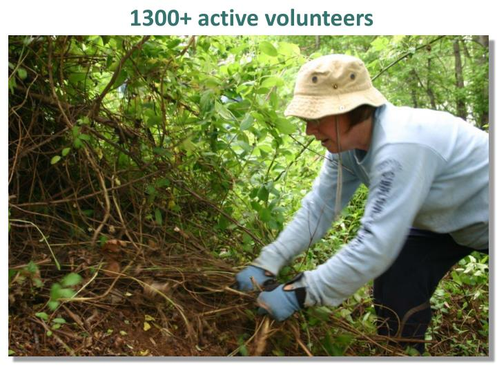 1300+ active volunteers