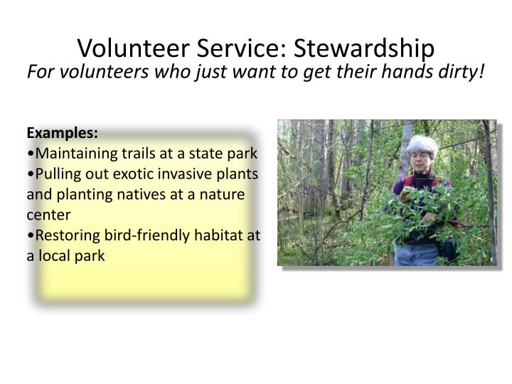 For volunteers who just want to get their hands dirty!
