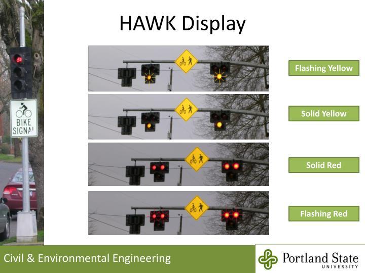 HAWK Display