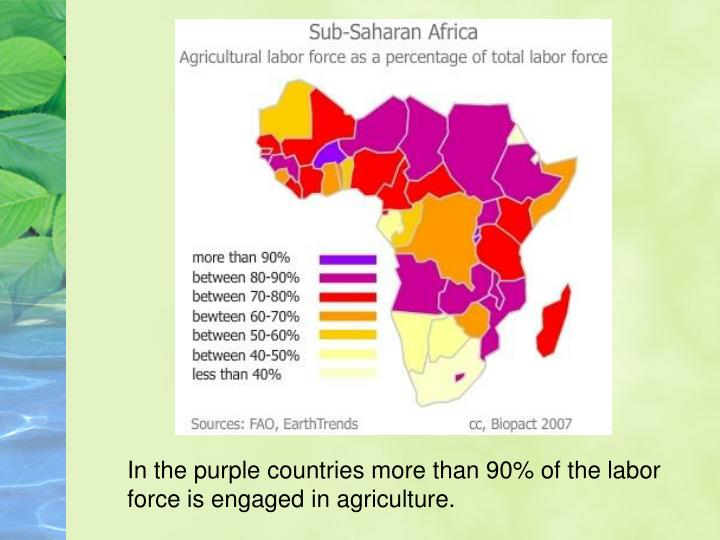 In the purple countries more than 90% of the labor
