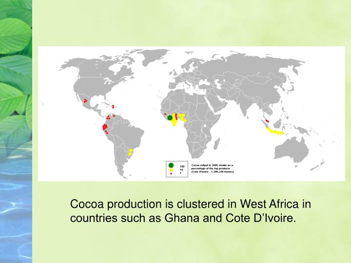 Cocoa production is clustered in West Africa in