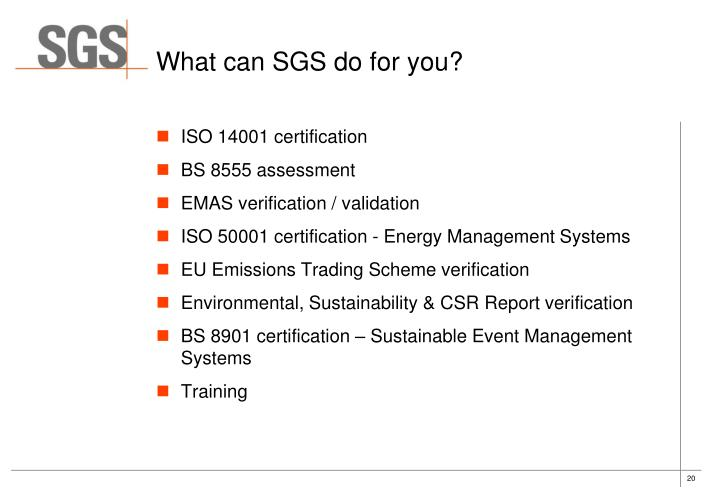 What can SGS do for you?