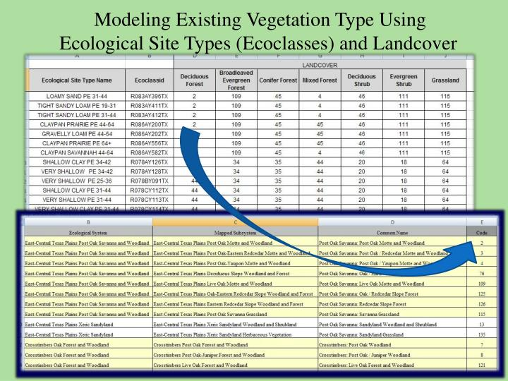 Modeling Existing Vegetation Type Using