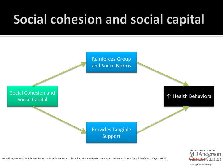 Social cohesion and social capital