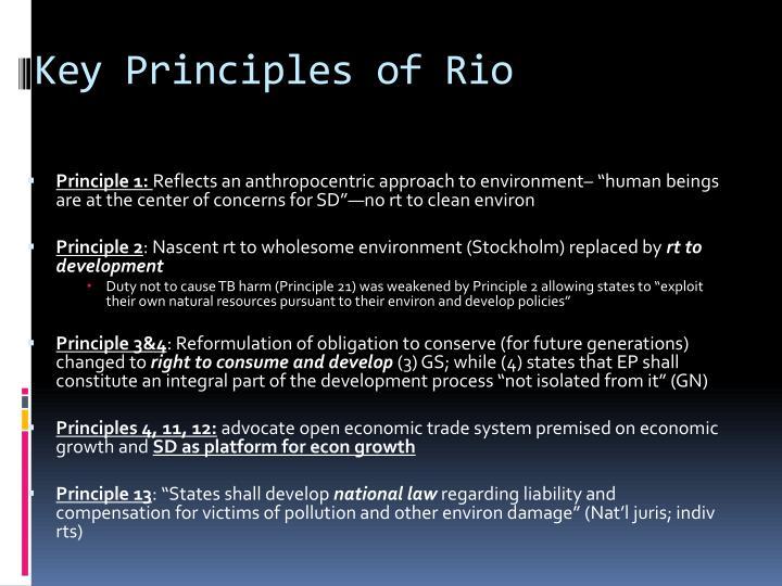 Key Principles of Rio